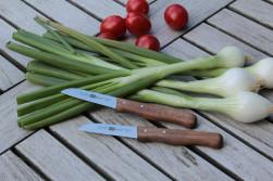 Küchenmesser 1071 Made in Solingen